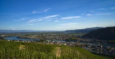 Vignobles des Côtes du Rhône, autour de Tournon et Tain l'Hermitage