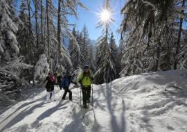 Raquettes à Neige - Cie des Guides de Chamonix