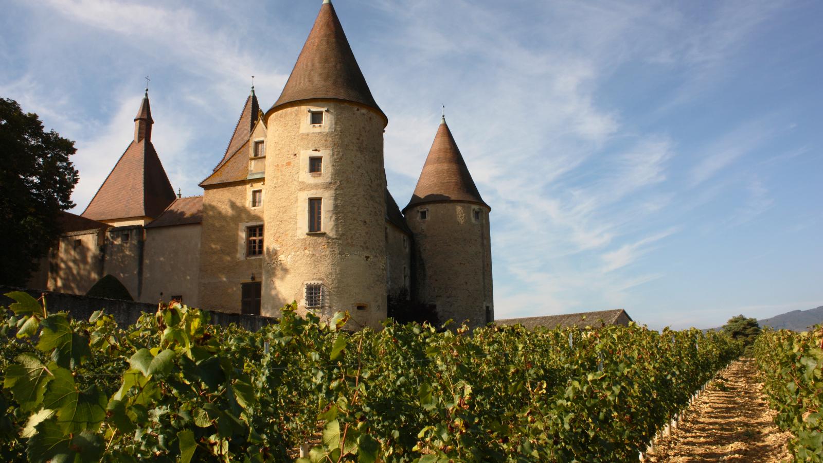 Façade nord du Château de Corcelles