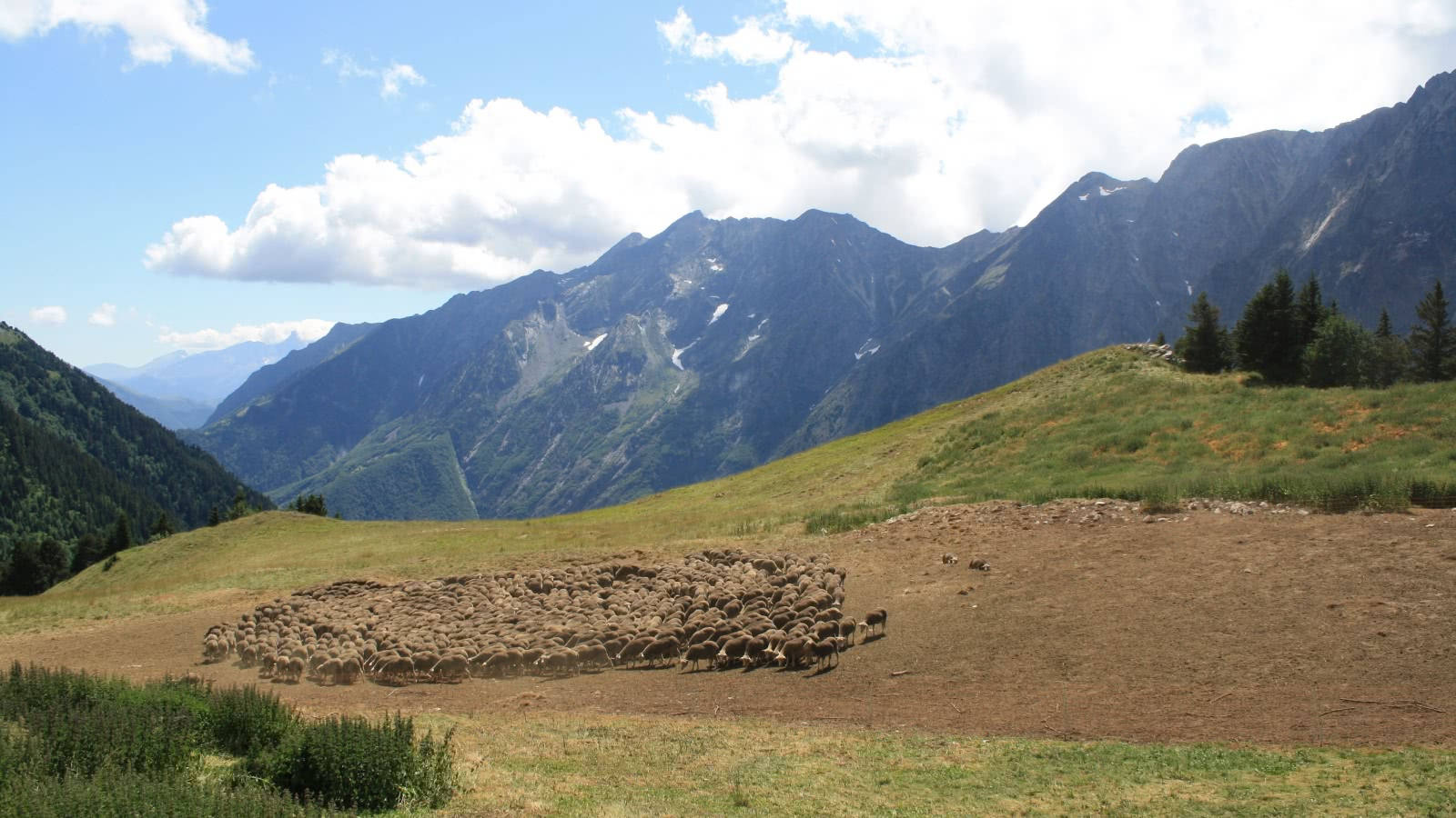 Alpage d'Ornon