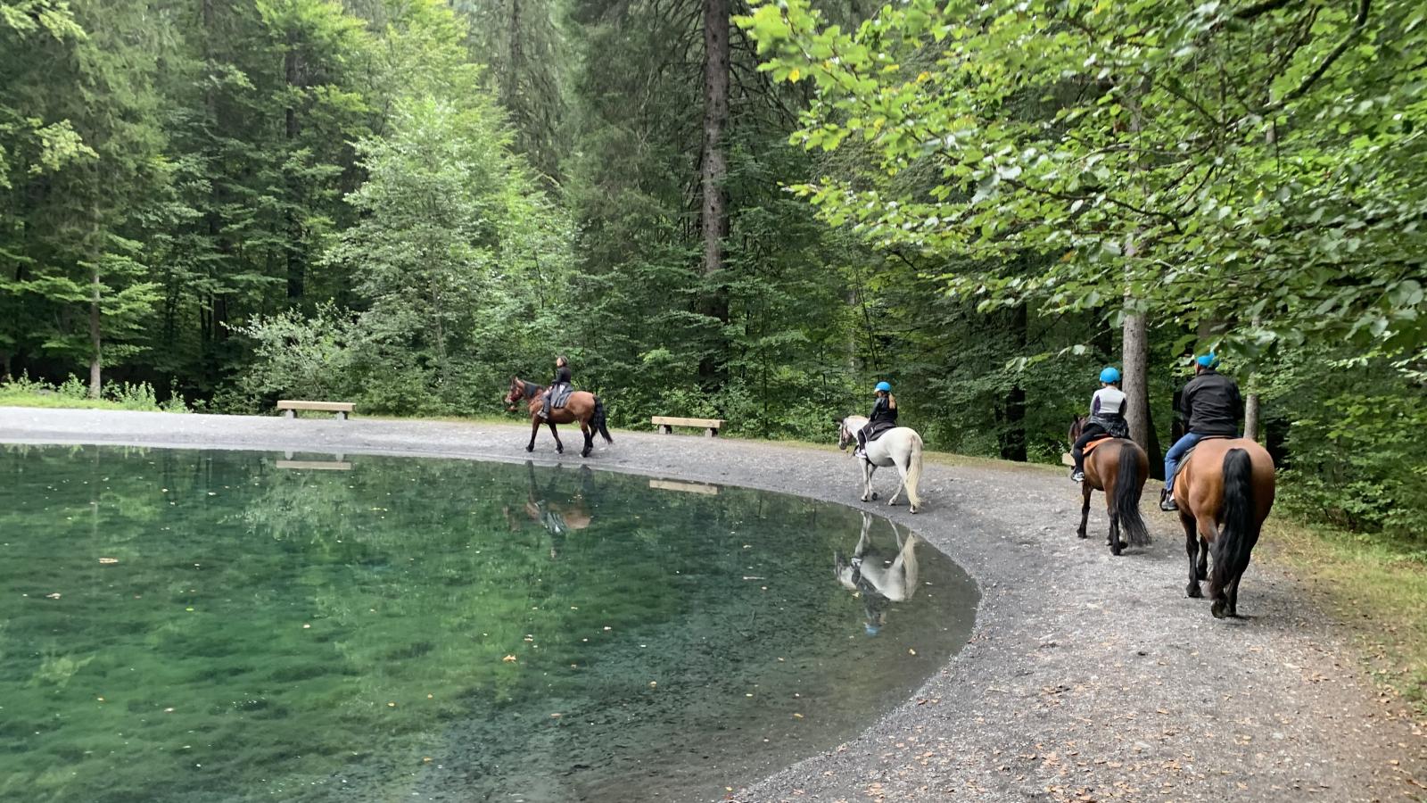 Balade à cheval dans le cirque du Fer-à-Cheval