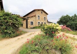 Gîte des Pampilles - Les Haies (Rhône, Pilat, proximité de Vienne et Condrieu) : la maison fleurie au printemps.
