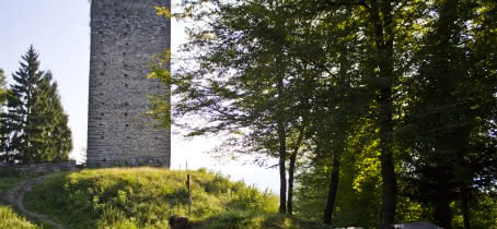 Visite guidée des tours Montmayeur avec Stéphane Verdet à Villard-Sallet
