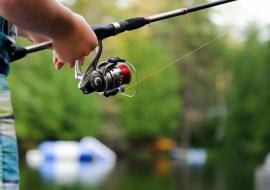 Pêcher dans la Chalaronne