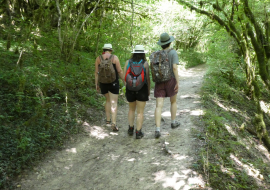 randonnée entre amis en forêt du Bugey