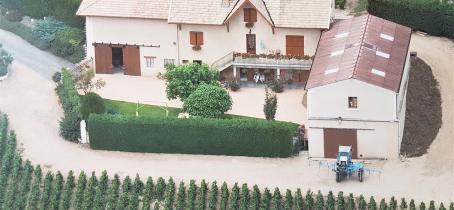 Chambres d'Hôtes 'Au Domaine de Robert' à Fleurie, dans le Beaujolais - Rhône.