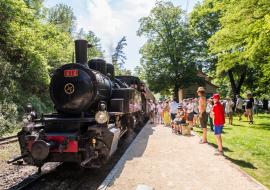Train des gorges fascinant week-end Vignobles&Découvertes